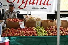 Organic Apples.jpg